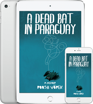 A Dead Bat In Paraguay Devices